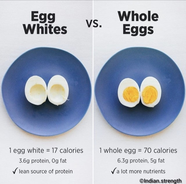 Protein content in Egg
