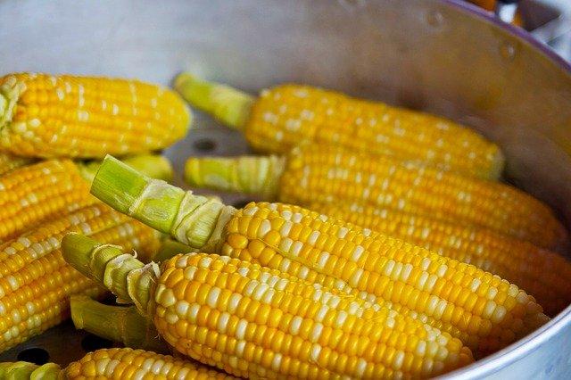 Oats/corn-