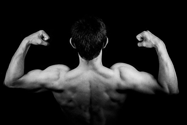 10 best back and biceps workout for mass